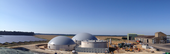 Abellon CleanEnergy inks pact with German Agraferm Group to set up biogas plants in Gujarat